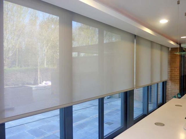 Roller Blinds, King David Campus